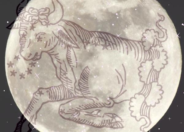 astrology november full moon 2017