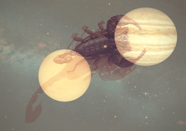 venus and jupiter astrology