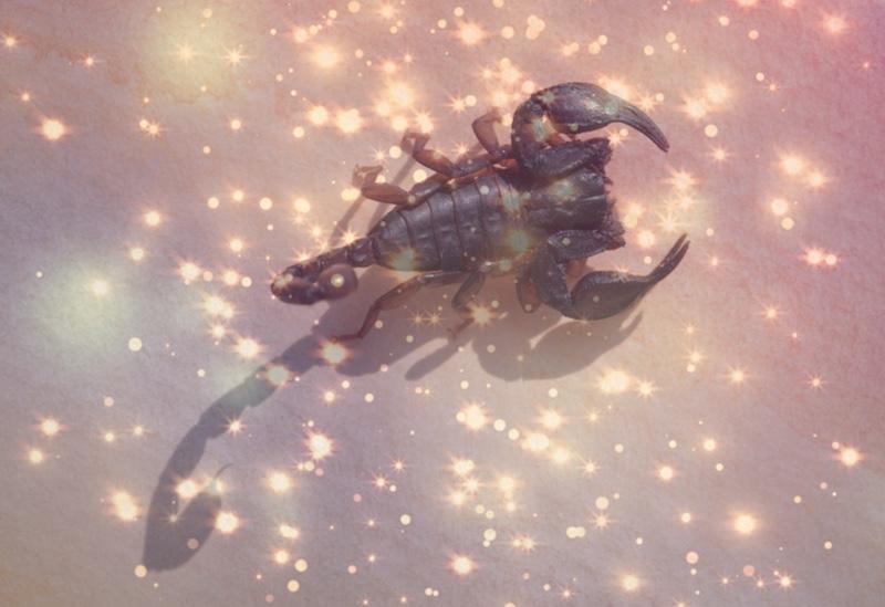 scorpio season astrology