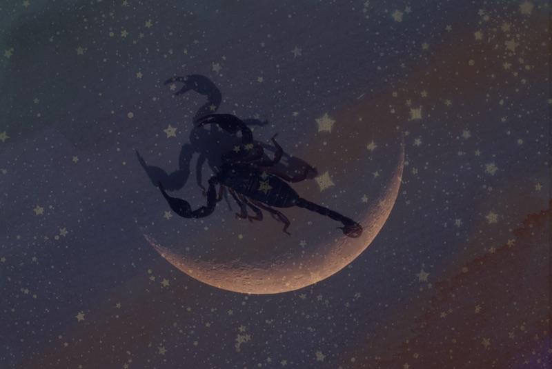 november new moon astrology
