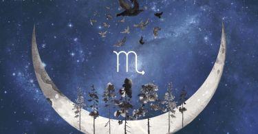 scorpio new moon astrology 2020