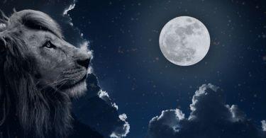 leo full moon january 2021
