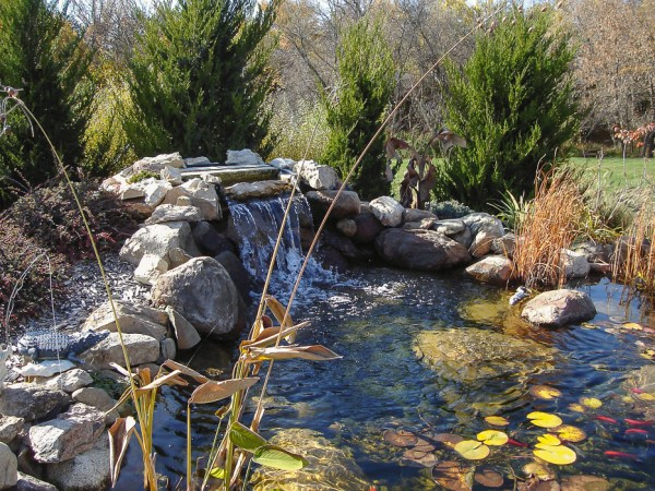 water features - ponds landscaping
