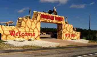 Dinosaur World Texas – Great Family Outing