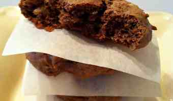 Gluten-Free, Grain-Free, Dairy-Free, Soy-Free Ginger Walnut Cookies