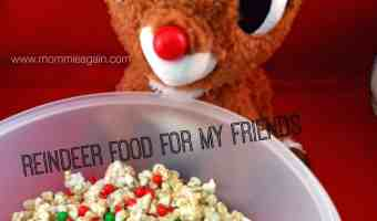 Our Son's Last Preschool Holiday Performance *Sigh* + Magical Reindeer Food!!!