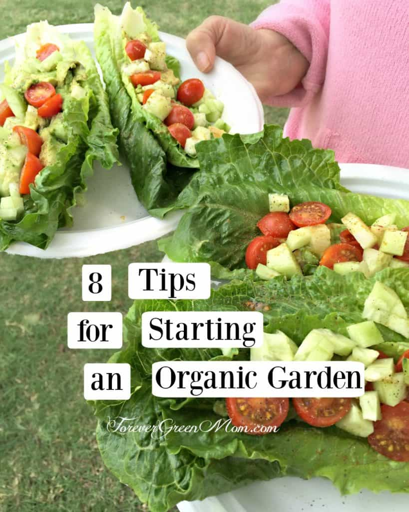 8 Tips for Starting an Organic Garden