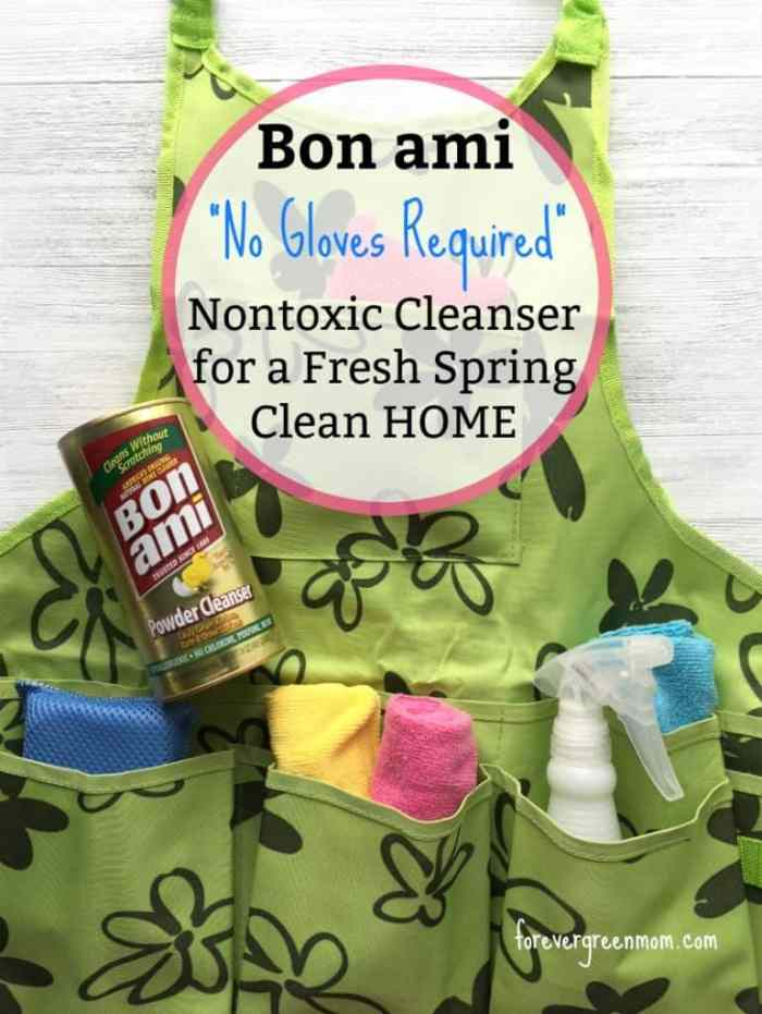 Bon ami - Effective Nontoxic Cleanser for Spring Cleaning