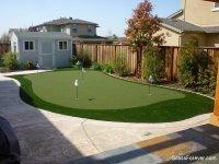 Backyard putting green | TigerDroppings.com
