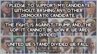 I PLEDGE TO SUPPORT MY CANDIDATE WITHOUT BASHING ANY OTHER DEMOCRATIC CANDIDATE.