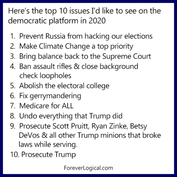 Here's the top 10 issues I'd like to see on the democratic platform in 2020