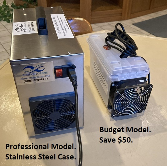 15h Budget 15g ozone generator