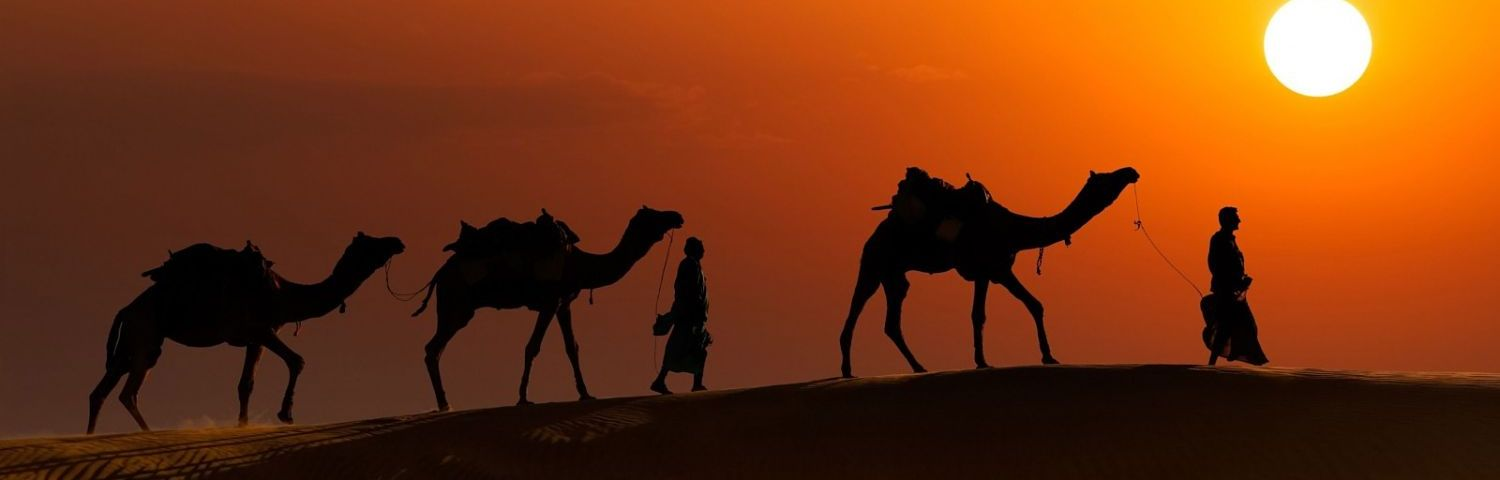 Jaisalmer-camel safari-india-rajasthan