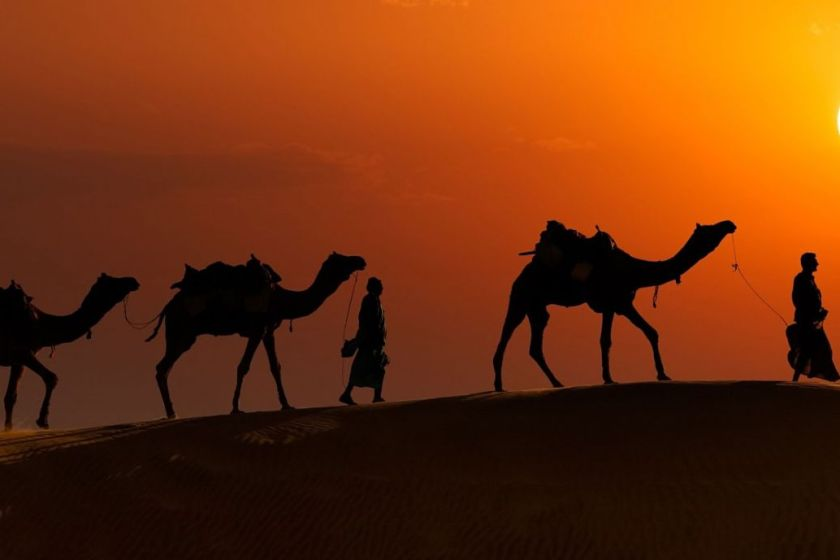 Jaisalmer-camel safari-india-rajasthan