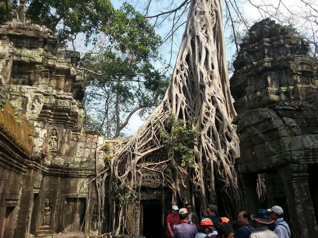 Ta-prohm-angkor-lara-croft-temple