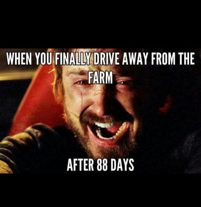 Signs you have backpacked Australia-farmwork-88 days