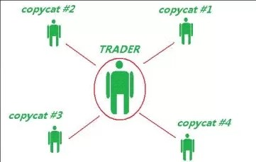 Copy Trade in Forex Trading