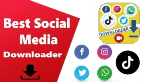 BEST SOCIAL MEDIA DOWNLOADER
