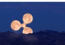 Ripple XRP Luna