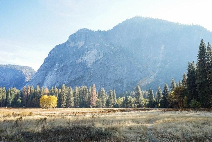 Yosemite 29