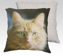 https://www.etsy.com/ca/listing/256752887/cool-cat-18x18-velveteen-pillow-cover?