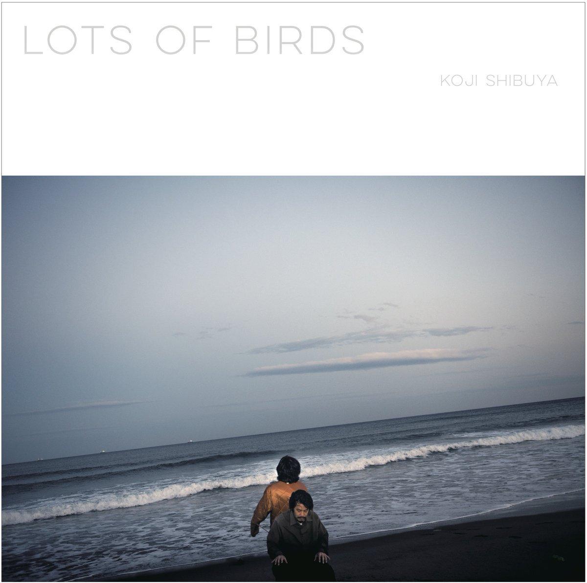 澁谷浩次『Lots of Birds』