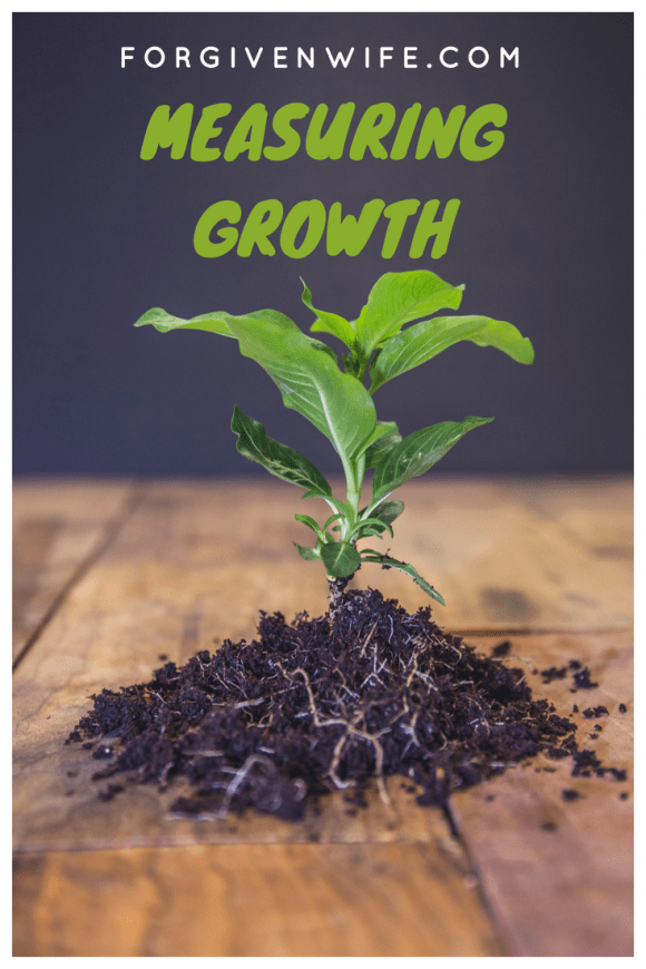 Growth should be measured in the long view.