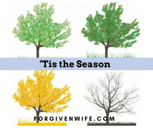 Healing from sexual trauma is likely to be a season rather than just a moment.