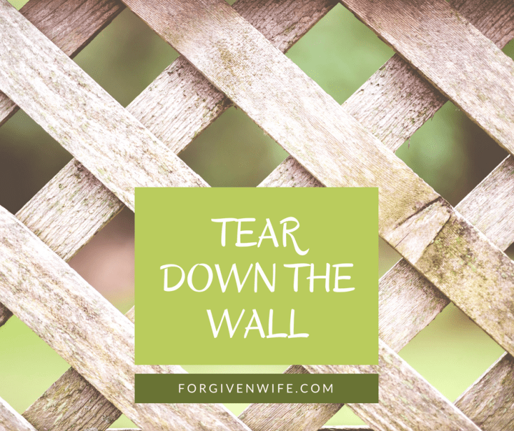 When I began to work on the sexual intimacy in our marriage, I knew I would need to dismantle my emotional wall.
