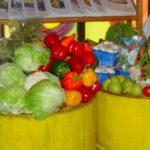 Dumpstered_vegetables-150×150