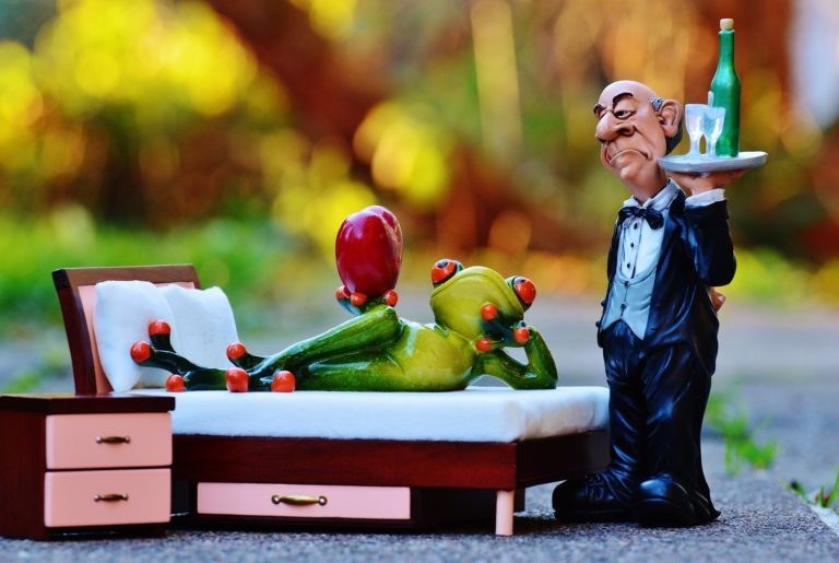 frog-1079969_1920-768×515