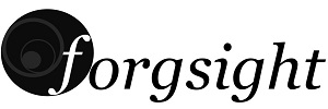 forgsight_Logo-1024×461 – ohne Sub
