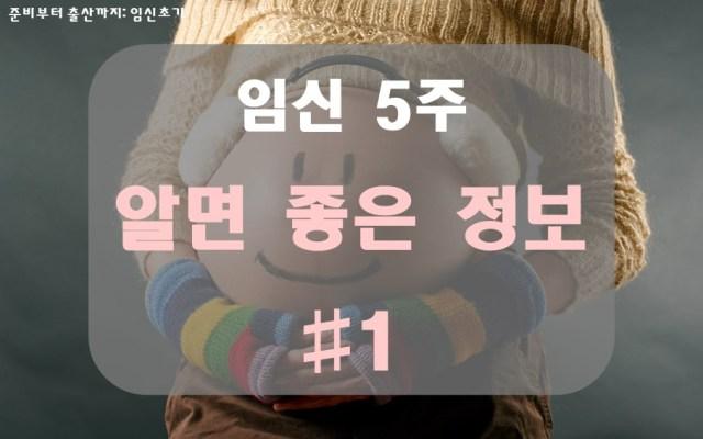 임신 5주, 예비 엄마가 알면 좋은 것 #1