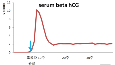 임신의 확인, beta hCG의 농도