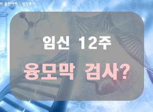 임신12주, 초기 기형아 진단검사: 융모막검사