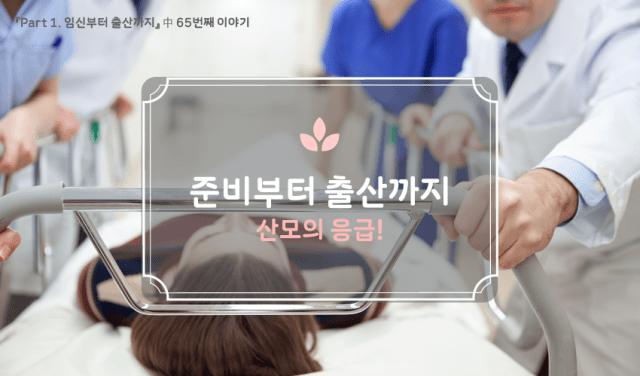 산모의 응급 임신 33주차5 min read