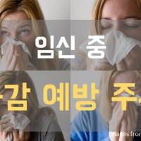 인플루엔자, 산모 독감예방 접종! 임신 중 독감예방 주사, 안전한가요?