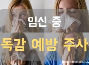 인플루엔자 예방접종]임신 중 독감예방주사,  안전한가요?