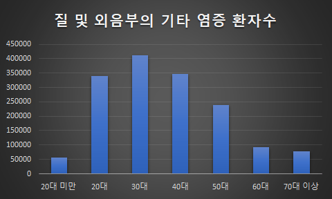질 및 외음부의 기타 염증 환자수 통계 심평원 2018년 자료