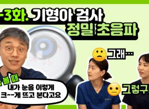 정밀초음파, 임신 중기 기형 선별 검사 (20-22주)