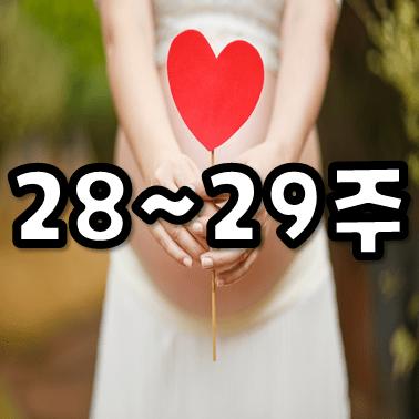 임신 28주, 아기가 잘 자라고 있나요? 임신과 출산을 준비