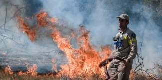 Εκκένωση-οικισμών-στα-Βίλια-Σε-ύφεση-η-φωτιά-στην-Κερατέα