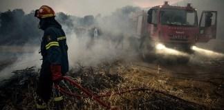 Οι-πρόσφατες-πυρκαγιές-στην-Αττική-έκαψαν-το-16%-των-δασών-της