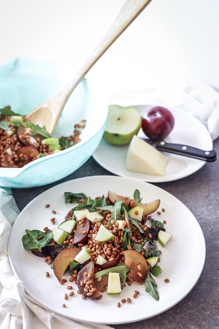 Plum Apple Wheat Berry Salad, a fresh and light summer grain salad with summer fruit, chewy wheat berries and a citrus dressing.