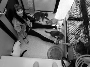 volunteer girl at shelter with cats for kitty's sake