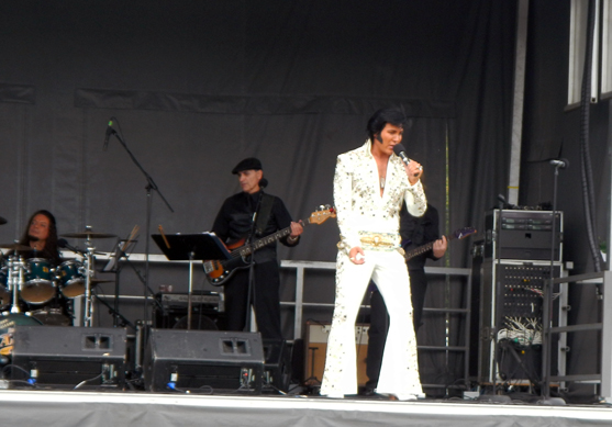 Elvis on stagescropped