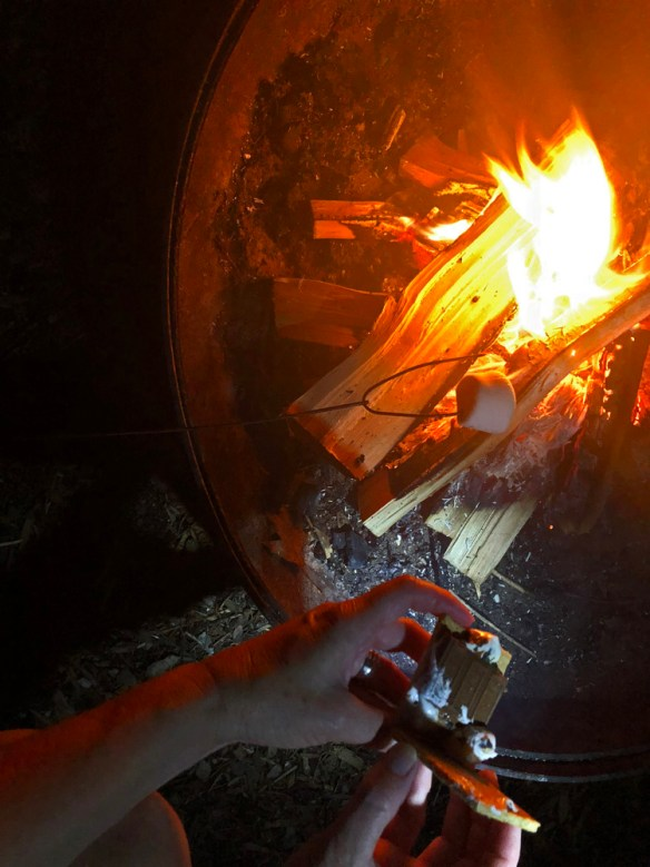 S'Mores - a Campfire Treat - toasting marshmallow on open fire and s'more