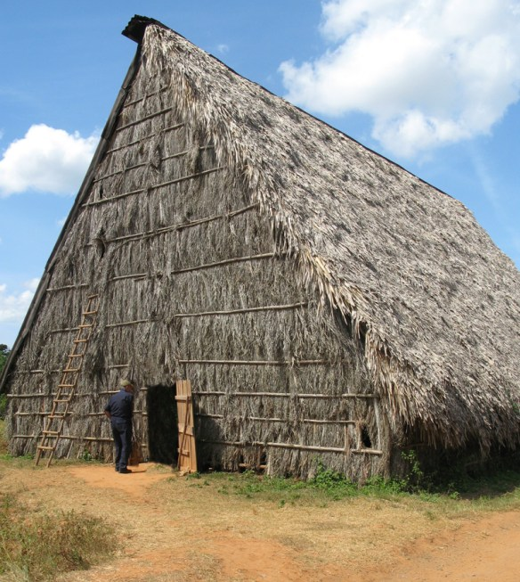 tobacco drying shed - The Perfect Cigar -Cuba's Gift to the World