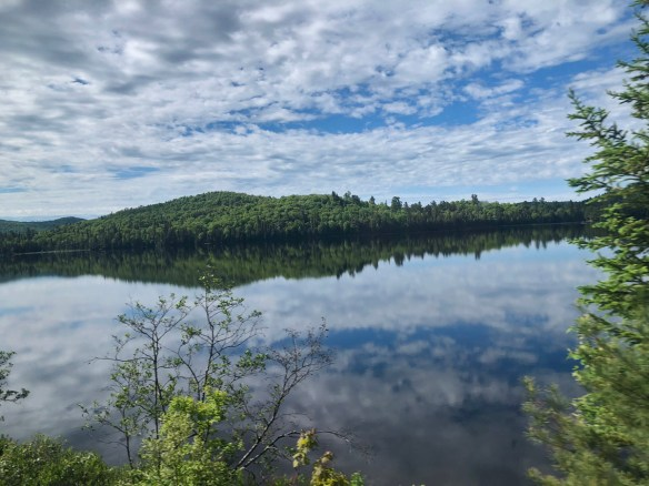 Clouds and forest reflected in a Northern lake in Algoma
