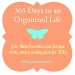 #Organizedin2013: Total Closet Make-Over